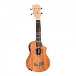 TANGLEWOOD TWT 1 CE