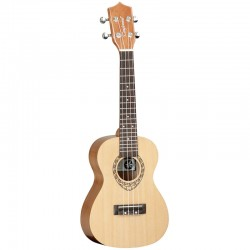 TANGLEWOOD TWT 9