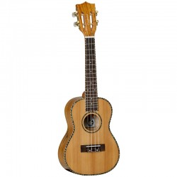 TANGLEWOOD TWT 11