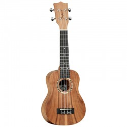 TANGLEWOOD TWT 7