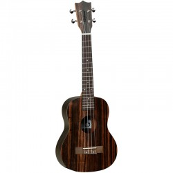 TANGLEWOOD TWT 19