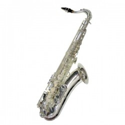 J. MICHAEL SAXO TN1100S