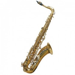 J. MICHAEL SAXO TN900