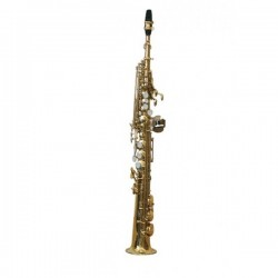 J. MICHAEL SAXO SP650